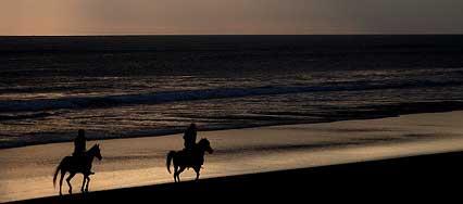 Horseback riding in Playa del Carmen