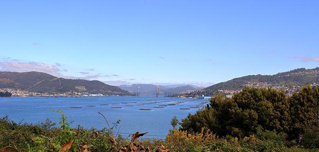 Una bonita vista de la Ría de Vigo