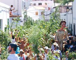 Fiesta de la Rama