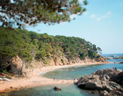 Beach in the North of Barcelona