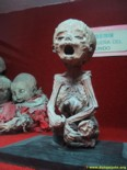 Mummies museum of Guanajuato