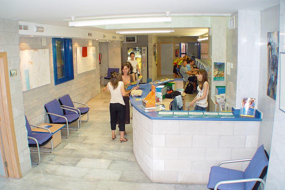 Школа языков в аликанте чартер