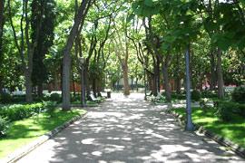 Allée à Pampelune