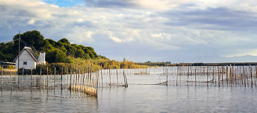 The Albufera in Valencia
