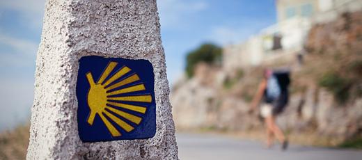 Walking the Camino de Santiago: Curious Facts and Advice