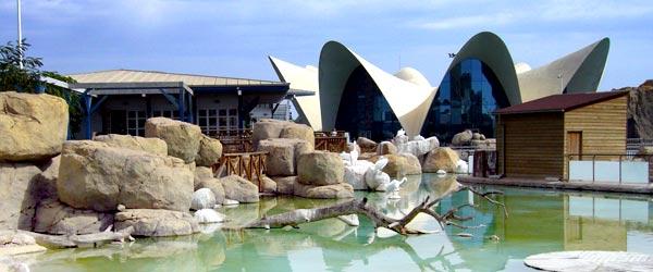 Aquarium in spain the valencia aquarium for Aquarium valencia precio