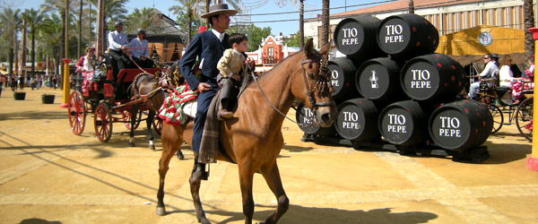 De Equestrian Art in Andalusië